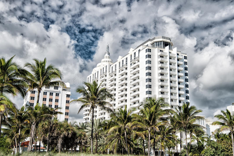 nowoczesna architektura Wysocy wzrostów budynki z zielonymi drzewkami palmowymi fotografia stock