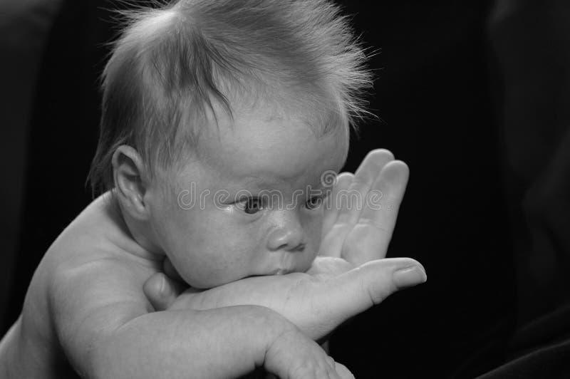 nowonarodzone dziecko obraz royalty free
