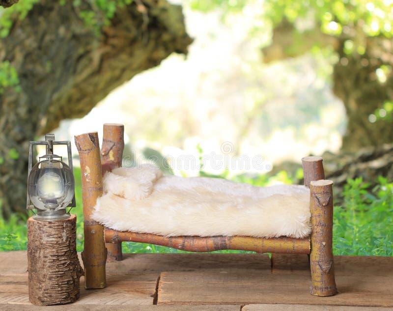 Nowonarodzony łóżkowy pracowniany cyfrowy wsparcie robić od Japońskiego klonu gałąź z dandelion zieleni natury łąkowym tłem obrazy royalty free