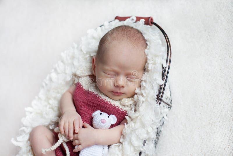 Nowonarodzony dziecko śpi w koszu w różowym ciele z małą zabawką obraz royalty free