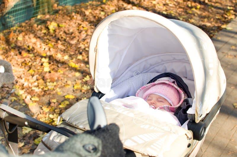 nowonarodzony sen spacerowicz w parku w jesieni zdjęcie royalty free
