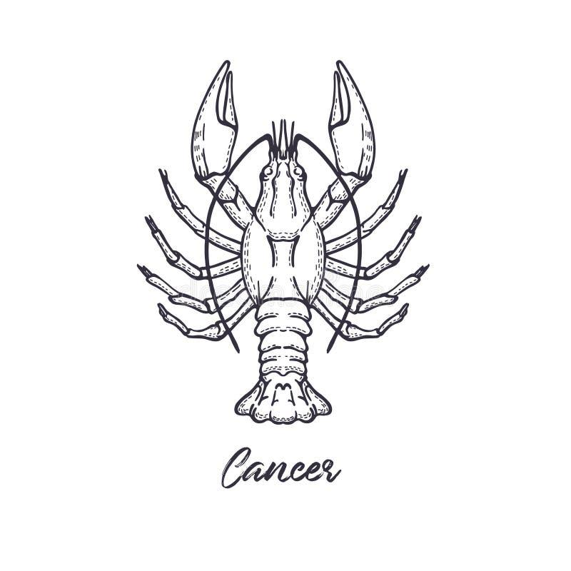 Nowotworu zodiaka gwiazdozbiór Symbol astrologiczny horoskop royalty ilustracja