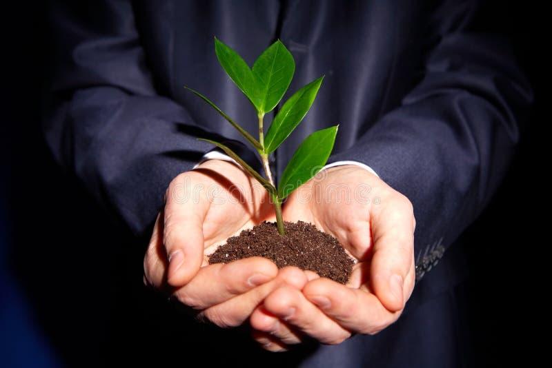 Download Nowy biznes obraz stock. Obraz złożonej z pomysł, środowiskowy - 28950789