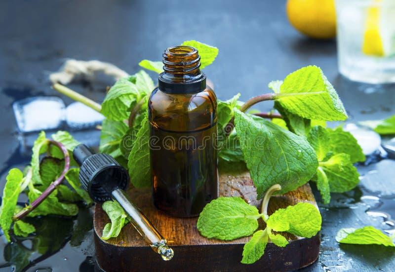 Nowy istotny olej w butelce Świezi miętówka liście z Essen obrazy stock
