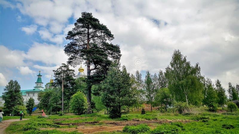 Nowy Jerozolima, Istra Moskwa region zdjęcie royalty free