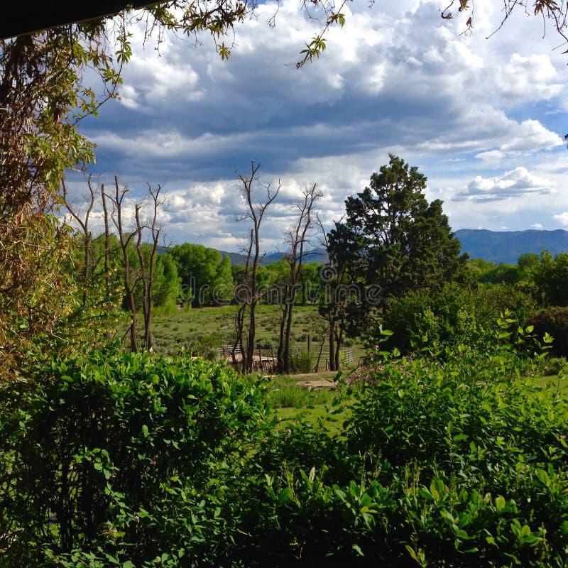 Nowy - Mexico wiosna fotografia royalty free