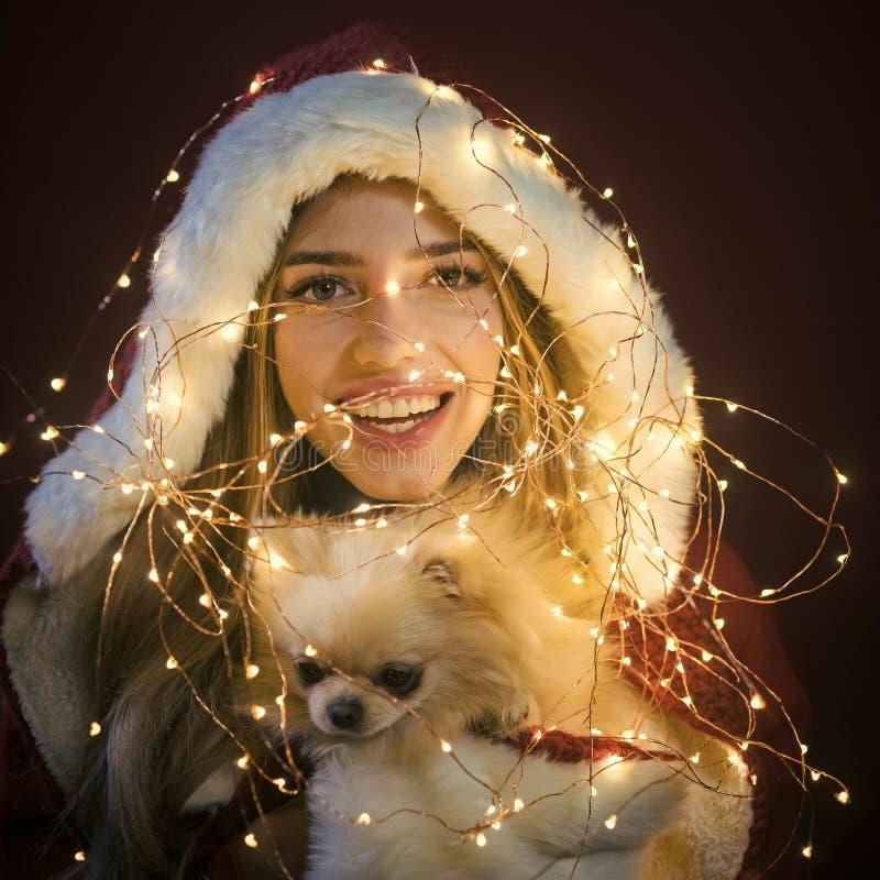 Nowy rok pies, cud i prezent, zastanawiamy się zdjęcie stock