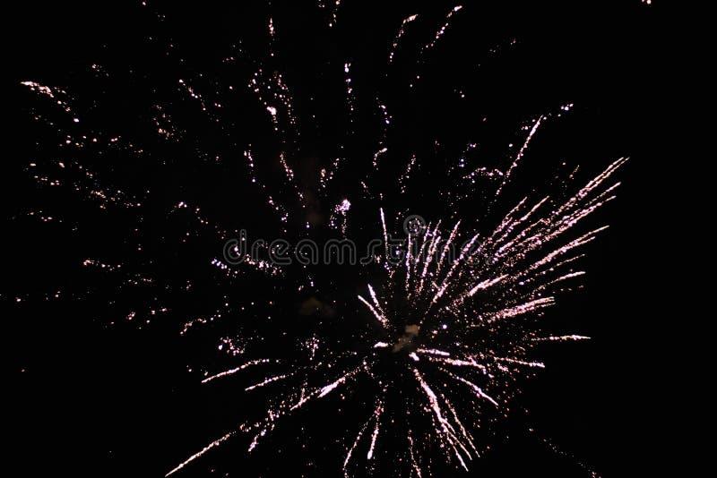 Nowy rok wigilia fajerwerków zdjęcie royalty free