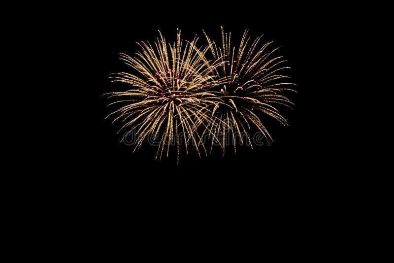 Nowy Rok wigilia fajerwerków, dwa tacets wybucha jak dwa cudownego bukieta kwiaty w żółtym pomarańczowym czerwonym świetle przed  fotografia stock