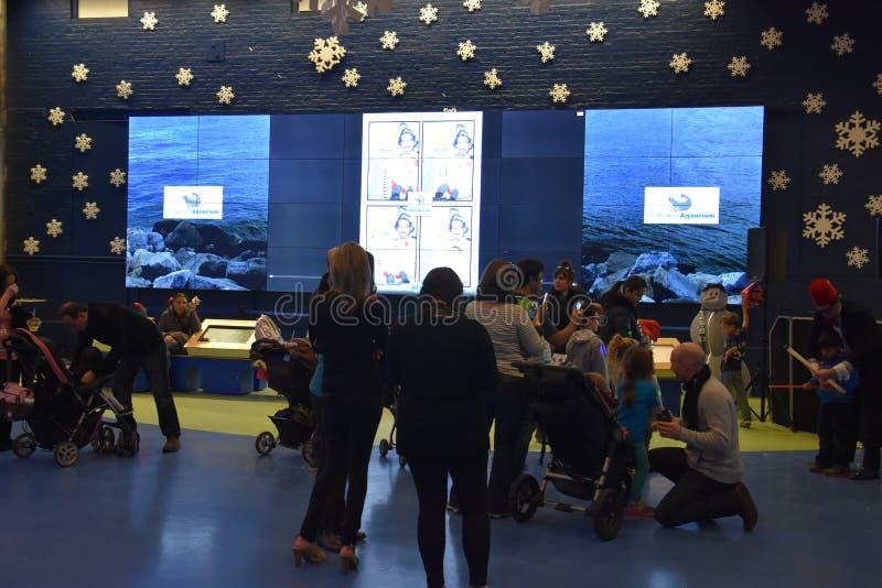 Nowy Rok wigilii świętowania przy Morskim akwarium w Norwalk, Connecticut fotografia stock