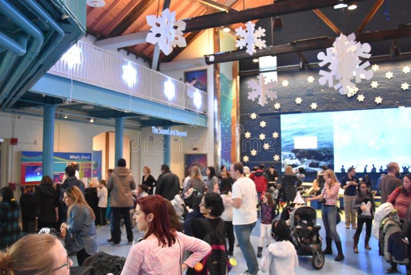 Nowy Rok wigilii świętowania przy Morskim akwarium w Norwalk, Connecticut obraz royalty free