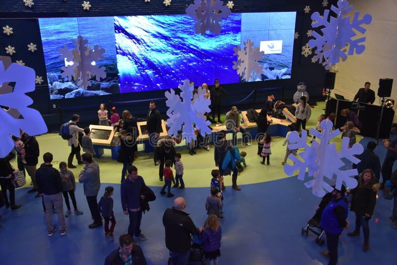 Nowy Rok wigilii świętowania przy Morskim akwarium w Norwalk, Connecticut obrazy royalty free