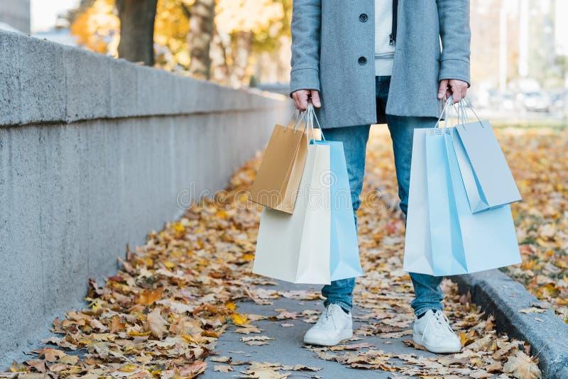 Nowy sezonu zakupy mężczyzny toreb spadku chodniczek obraz royalty free
