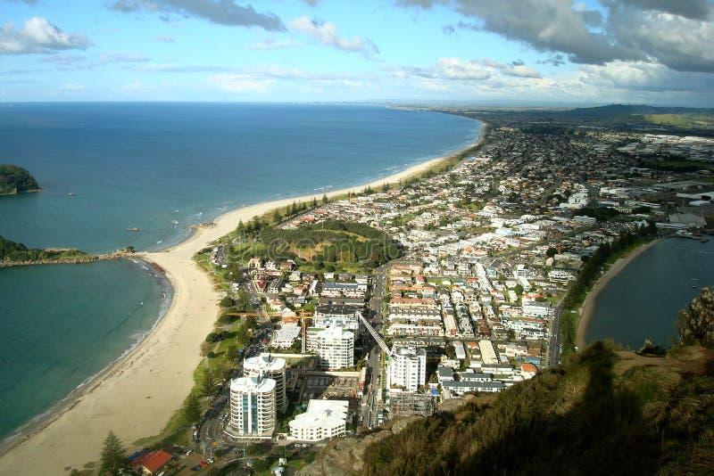 nowy Tauranga Zelandii miejskie fotografia stock