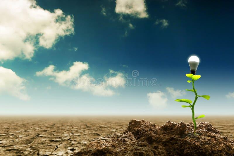 Nowy Zielony odnawialny i Podtrzymywalny Energetyczny pojęcie obraz royalty free