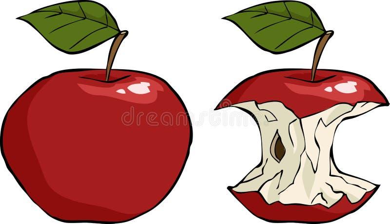 Noyau d'Apple illustration stock
