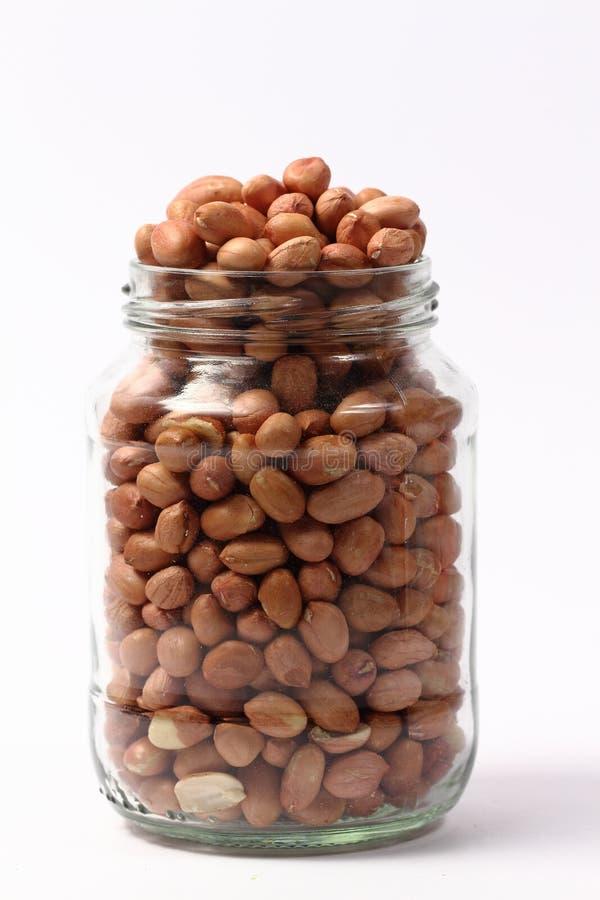 Noyaux d'arachide images stock