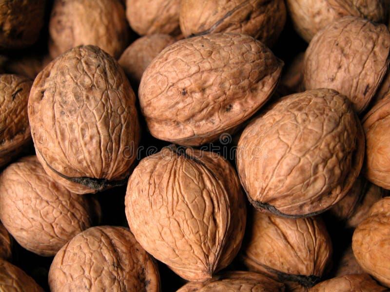 Download Nozes imagem de stock. Imagem de fruta, alimento, nozes - 56173