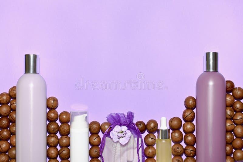 Nozes de macadâmia entre garrafas de cosméticos e perfumes imagens de stock royalty free