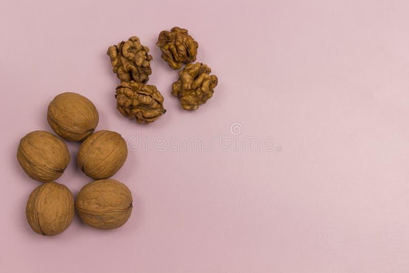 Nozes Fonte de proteínas do vegano e ácidos gordos Aptidão alimentar para a saúde fotografia de stock royalty free