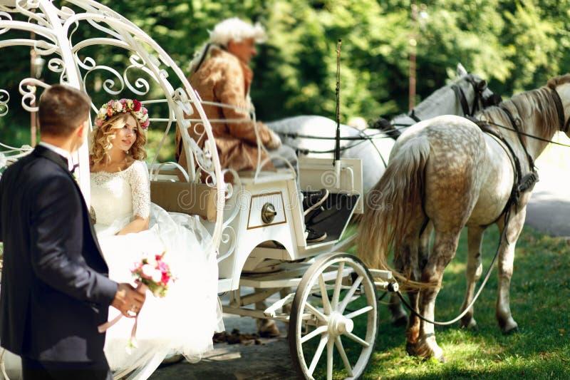 Nozze magiche del trasporto e del cavallo di nozze di Cenerentola di fiaba fotografia stock