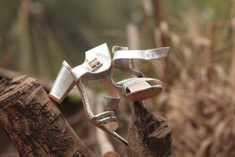 Nozze tradizionali africane 1 immagine stock