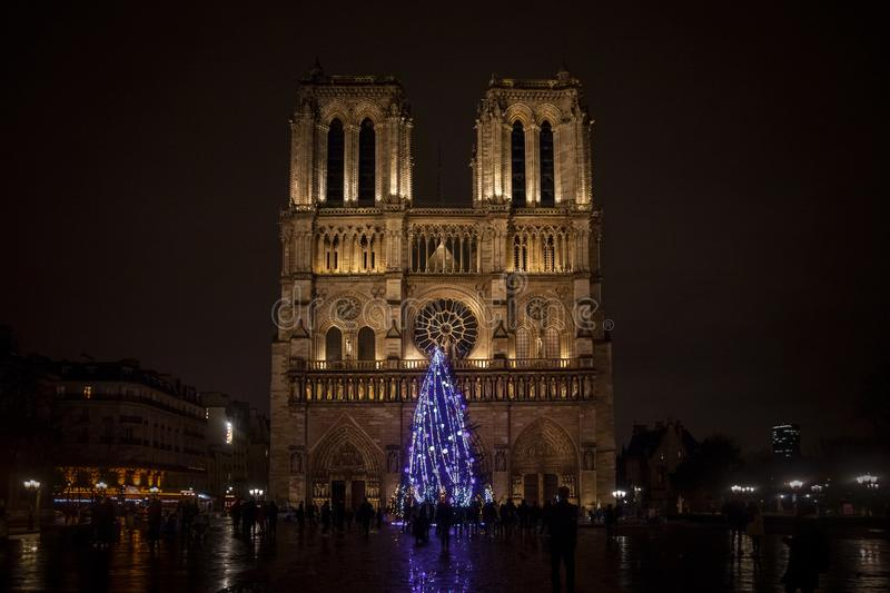 Notre Dame de Paris Cathedral at night with the traditional Christmas tree in front. NPicture of Notre Dame de Paris cathedral in winter with the traditional royalty free stock photography