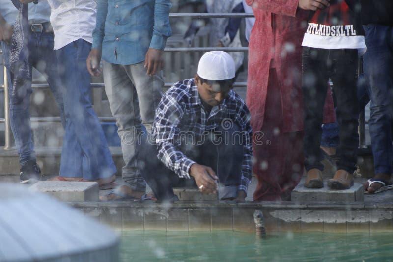 NPL: Nepal celebrates Eid al-Adha royalty free stock images