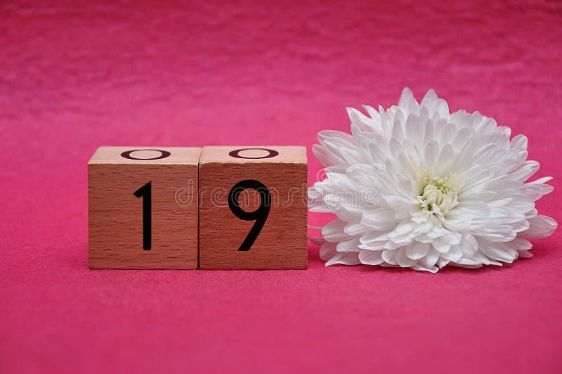 Nr. neunzehn mit einer weißen Aster stockbilder