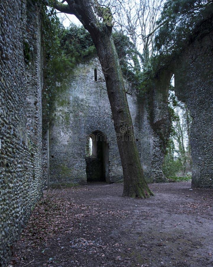 Nside die Ruinen von Somerton-Kirche an einem Tag des Winters stockfoto