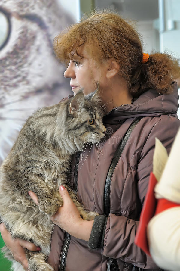 Nternational exhibition of cats. Specialized Exhibition of canine, feline clubs and animals. Competitions, exhibitions, competitions, special programs Zooshow stock image