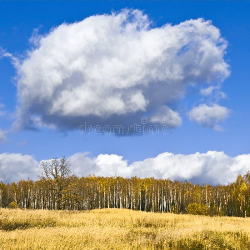 Nuage d'automne photo libre de droits