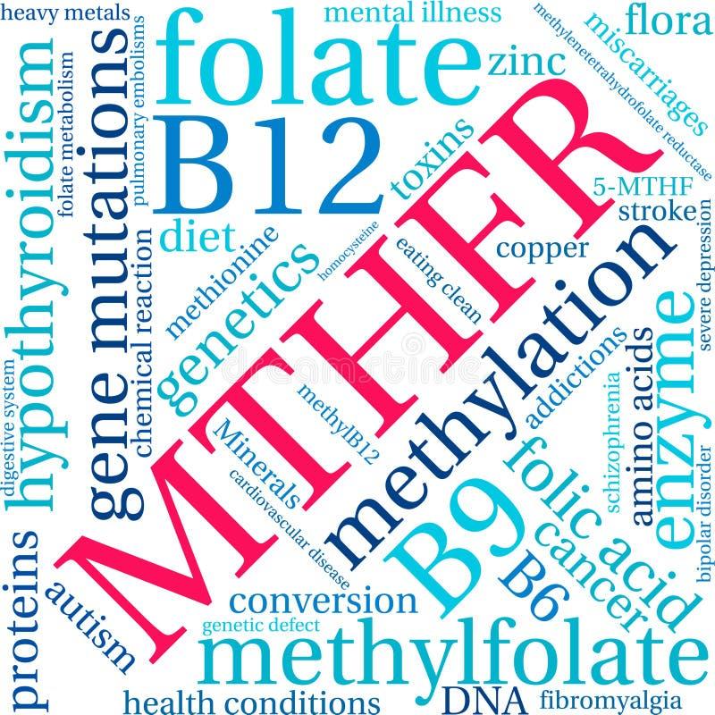 Nuage de MTHFR Word illustration libre de droits