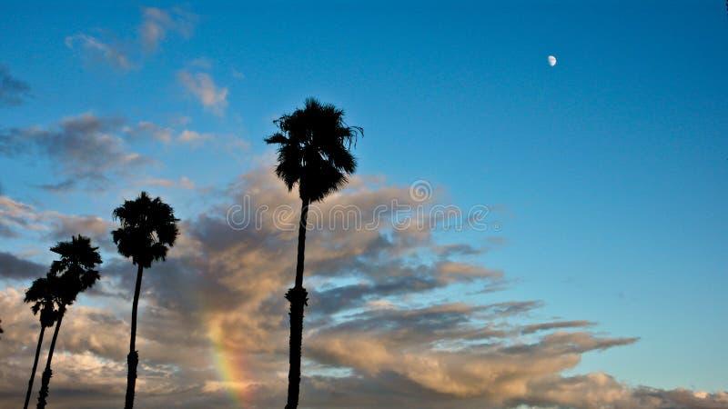 Nuages, arc-en-ciel et palmiers photographie stock