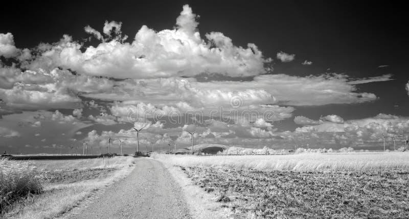 Nuages d'été au-dessus des champs photographie stock libre de droits