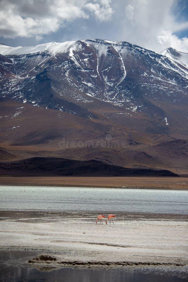 Nuages de tempête dans la haute de région d'altiplano dans les montagnes des Andes de la Bolivie photos libres de droits