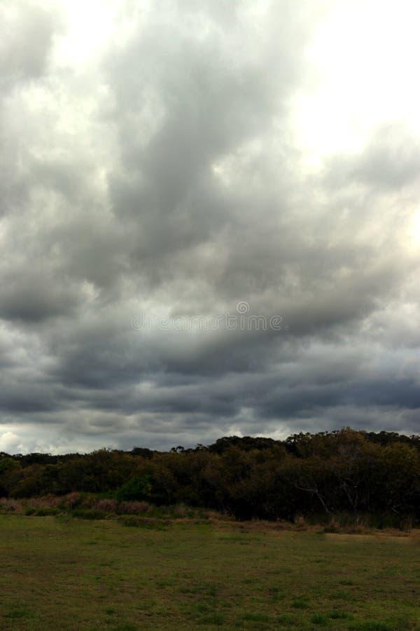 Nuages de tempête dramatiques au-dessus des champs herbeux en portrait image stock