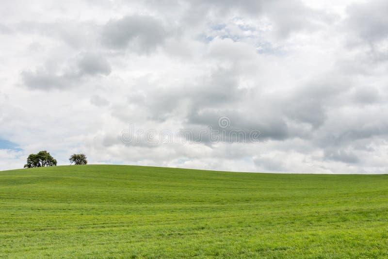 Nuages foncés au-dessus d'une colline d'herbe (laissée) image libre de droits