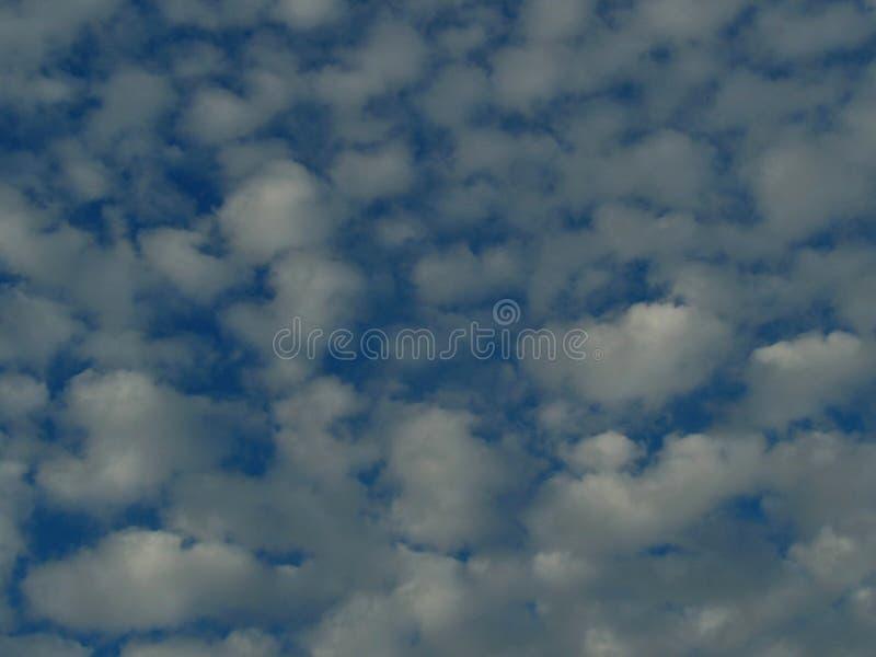 Nuages gonfl?s et ciel bleu photos stock