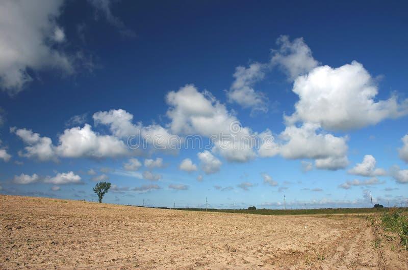 Nuages sur le ciel photo libre de droits