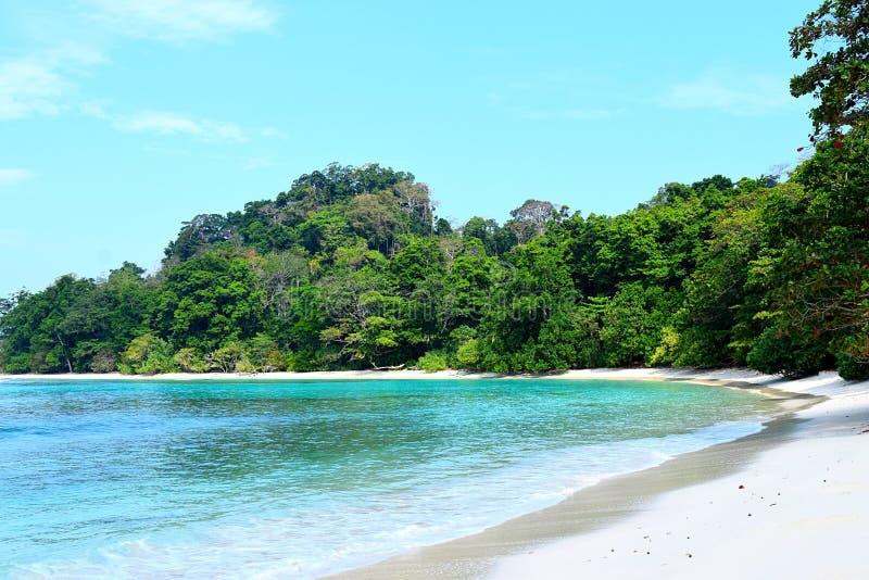 Nuances du bleu - paysage pittoresque avec l'eau de turquoise, le ciel bleu, les arbres verts, et le Sandy Beach blanc photographie stock libre de droits