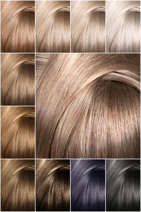 Nuancier pour des teintes Échantillons teints de couleur de cheveux disposés sur une carte dans des rangées ordonnées image stock