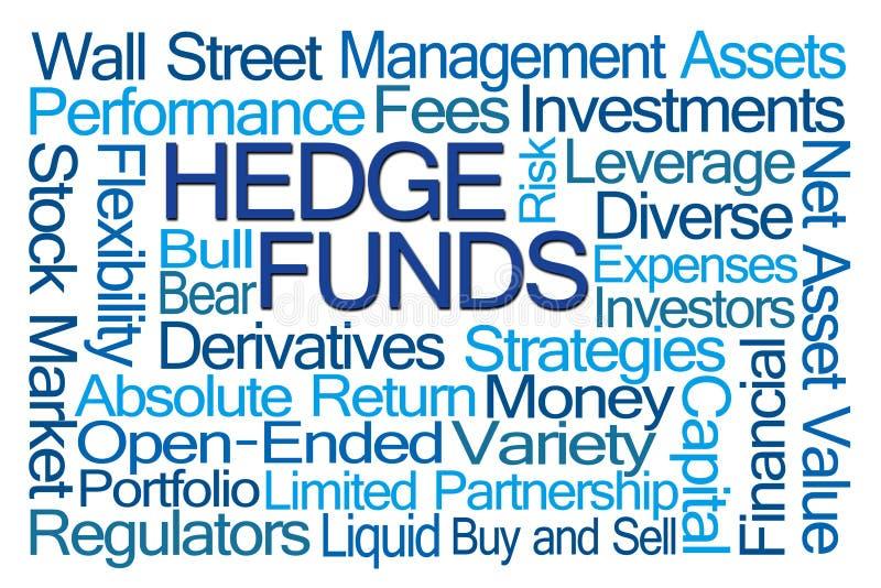 Nube de la palabra de Hedge Funds stock de ilustración