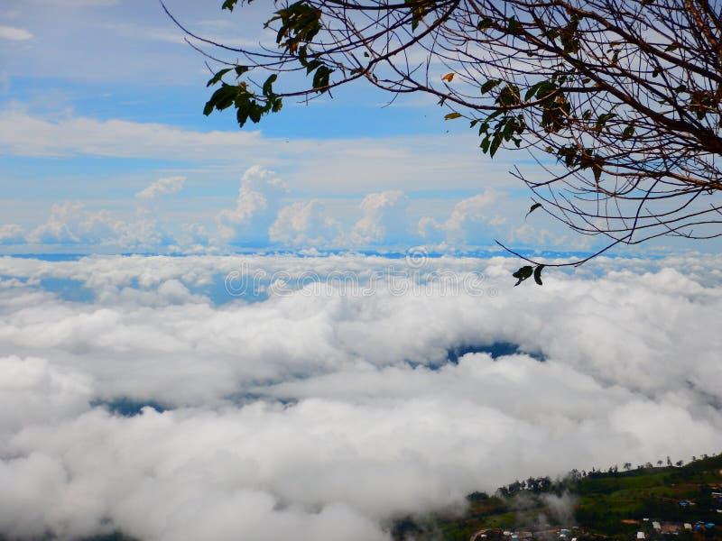 Nube del mar en la montaña fotografía de archivo libre de regalías