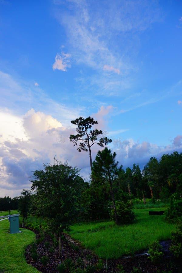 Nube determinada del sol de la Florida imagenes de archivo