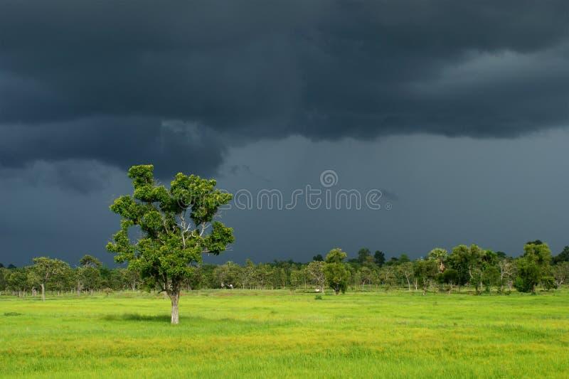 Nube scura della stagione delle pioggie immagini stock libere da diritti