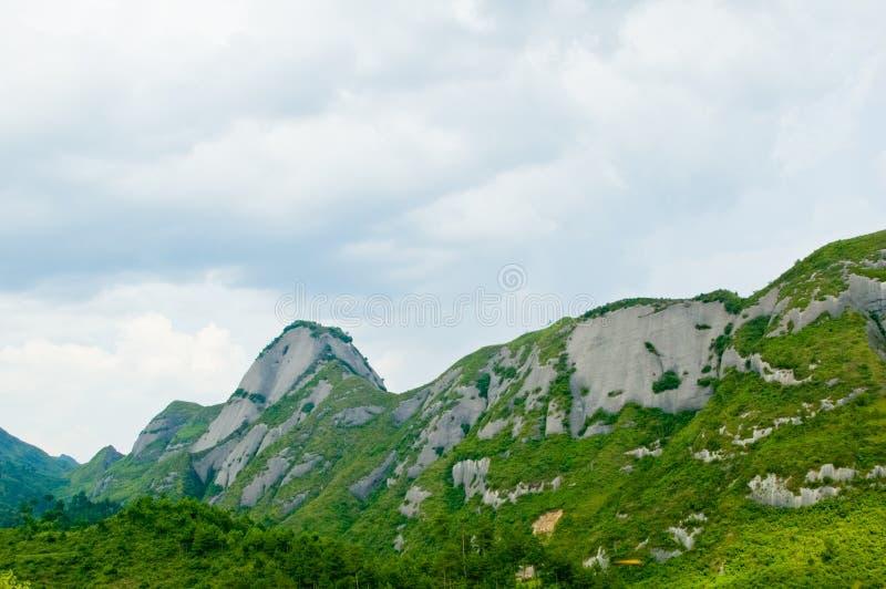 Nube verde di bianco della montagna immagine stock