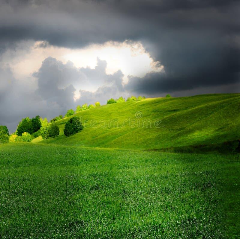 Nube verde di tempesta e del pascolo immagine stock