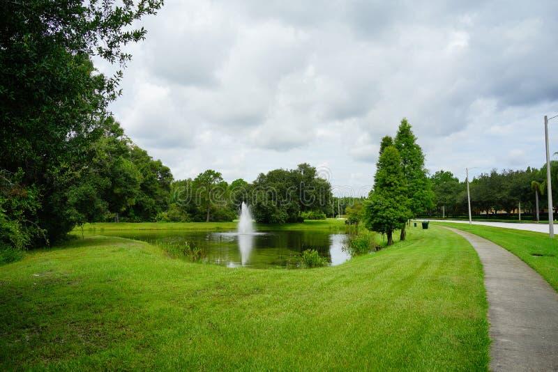 Nube y ?rbol de la Florida imagen de archivo