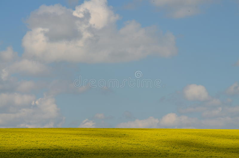 Download Nubes foto de archivo. Imagen de blanco, violación, nublado - 64201180